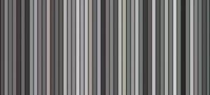 grijstinten-524acfa52fcf1