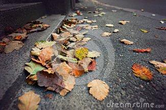 de-herfst-stad-60411697